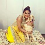 Natasha Doshi, Jai Simha Actress, yellow dress, dog