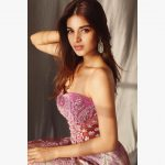 Nidhhi Agerwal, Mr. Majnu Actress, side pose, structure
