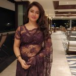 Poonam Bajwa, brown saree, pretty