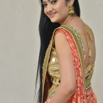 Akshitha, Prementha Panichese Narayana Actress, saree, side view
