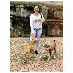 Srushti Dange, Lots Of Love Actress, street dogs